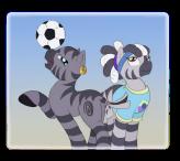 zebra-soccers1